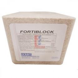 PIEDRA DE SAL FORTIBLOCK